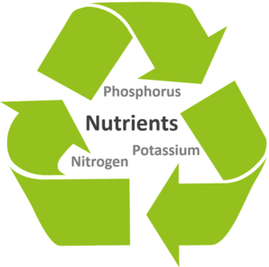 Exemplary nutrients for recycling