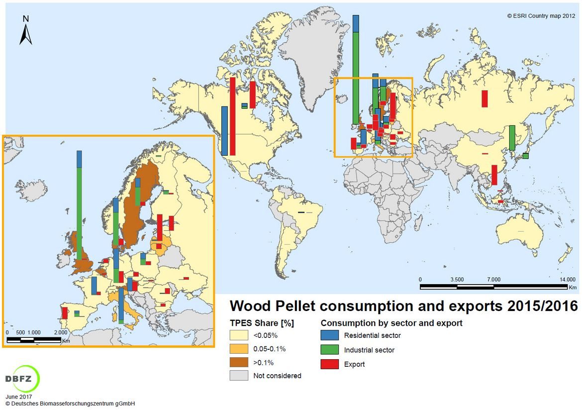 Figure 1: Countries with relevant wood pellet consumption and/or export in 2015/2016 © DBFZ, 2017