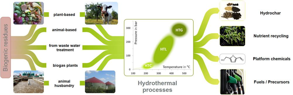 Feedstocks and products of hydrothermal processes